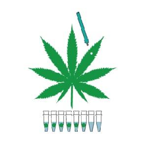 Kits Medicinal Genomics